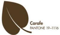 carafe_header