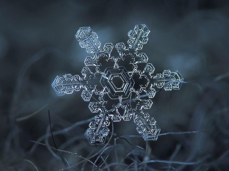 Neticami skaistās un trauslās sniegpārslas