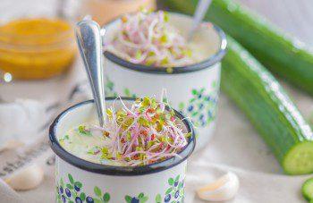 gurku zupa (3)