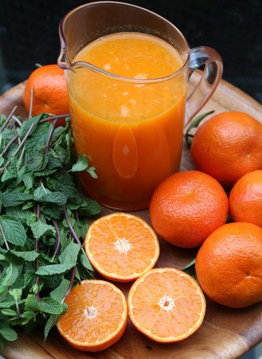 Ingredients-for-mandarin-mojitos