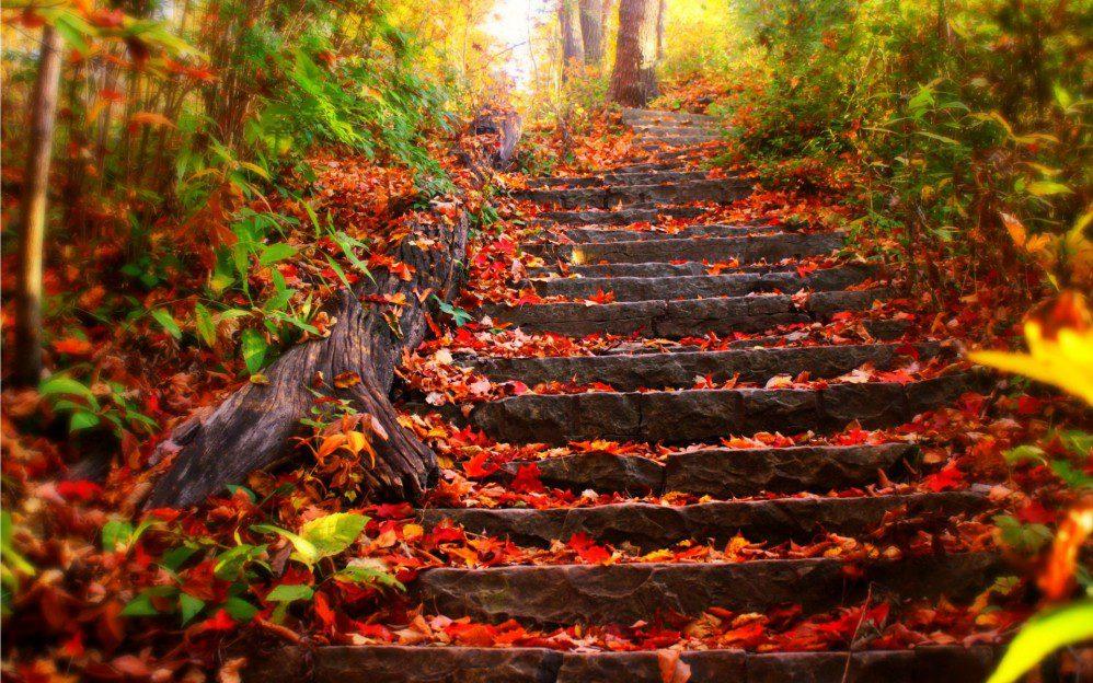 10 iedvesmojošas atziņas rudenim