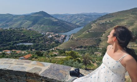 Porto. Vīns un flīzes, kā vecs foto albums
