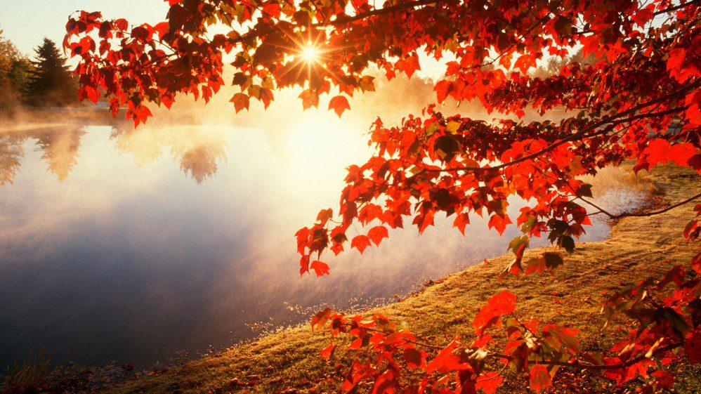 Rudens, kā rudens…
